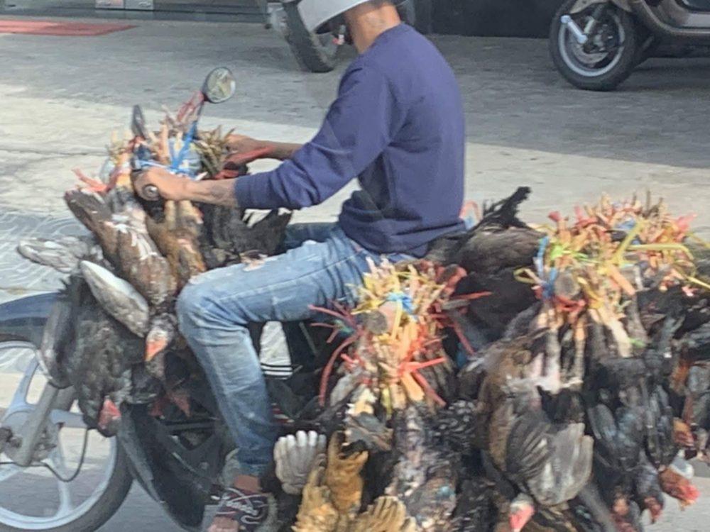 カンボジアあるある